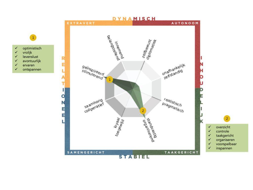 Fitch grafiek met daarin een profiel met en uitschieten naar geinspireerde stimulerend en naar standvastig georganiseerd